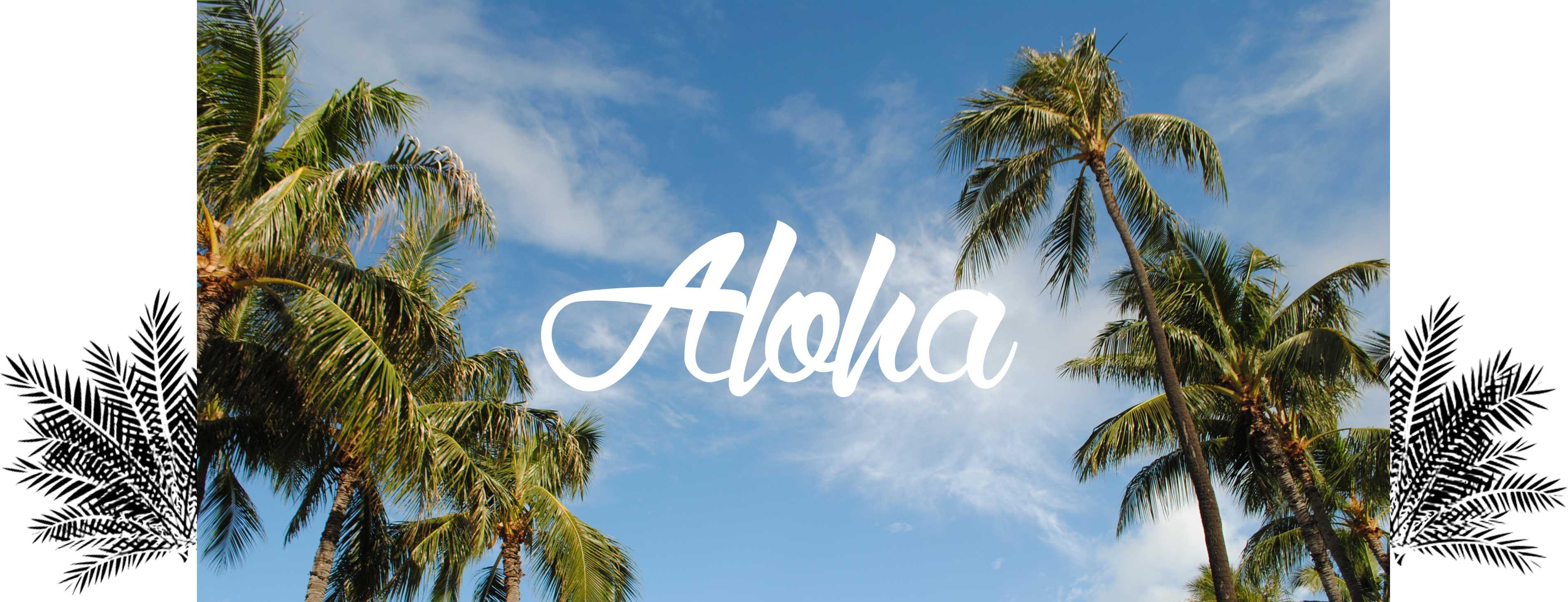 rencontres Hawaii idées de nom d'écran pour les sites de rencontre